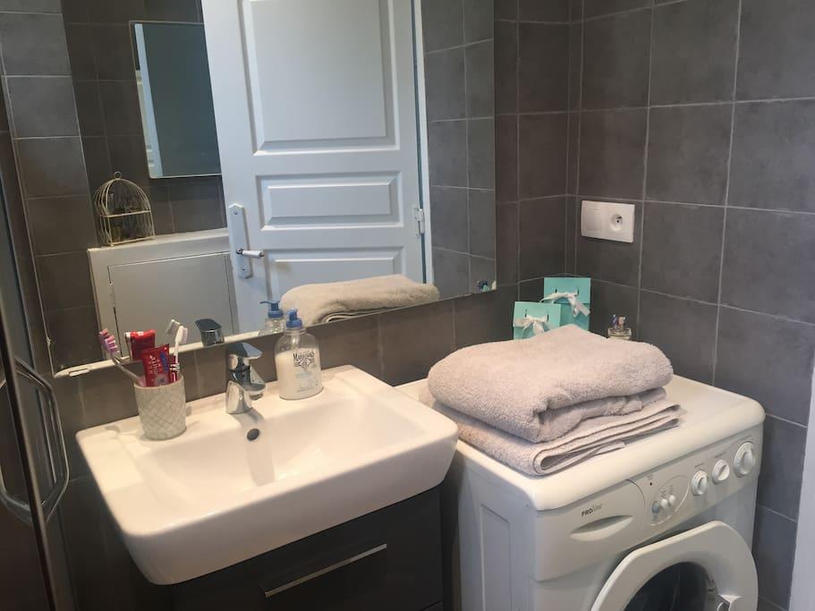 Grande salle de bain moderne et tout confort