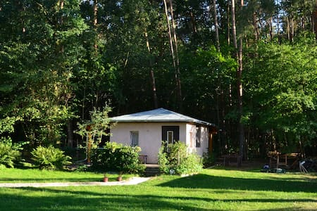 Romantische Auszeit am Wald und See - Hut