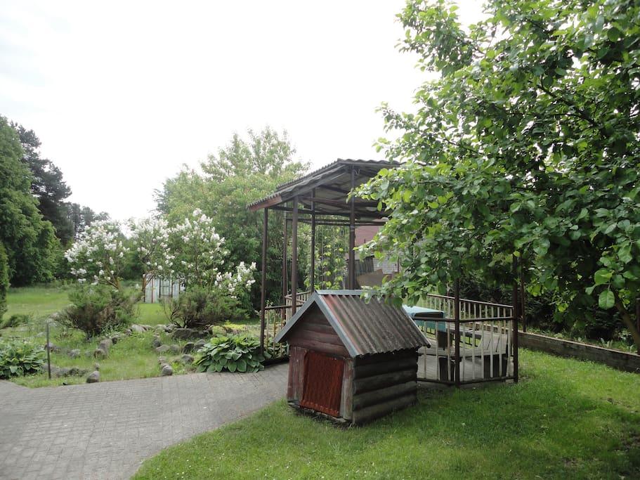 Наш сад и газоны(20 соток)
