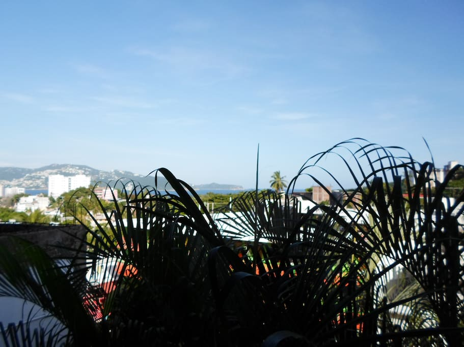 Vista principal desde la sala
