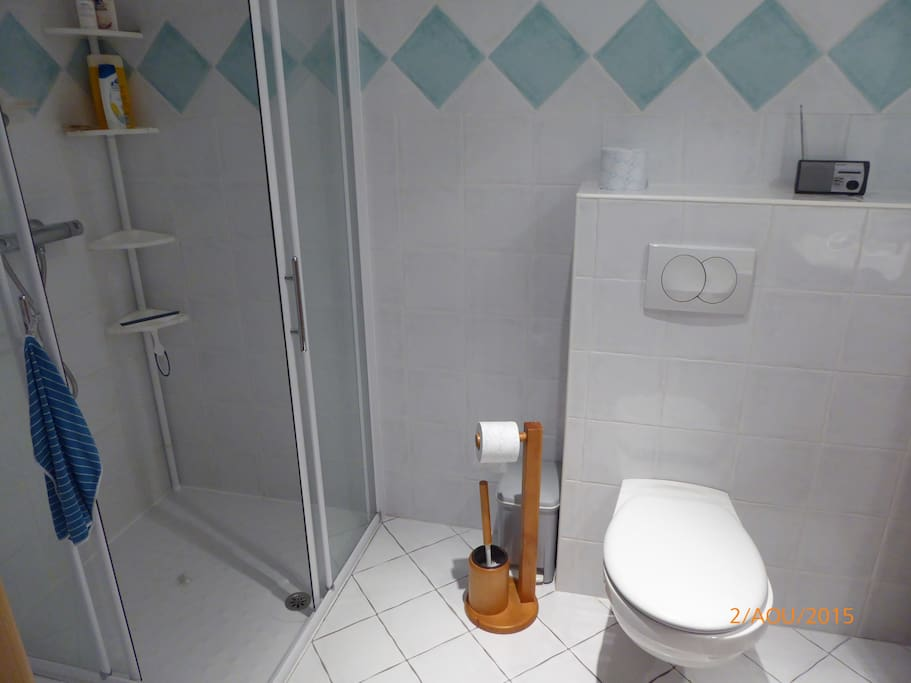 salle d'eau avec wc douche et lavabo