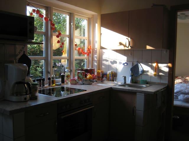 Ostsee-Spot: 1 - 5 Gäste, eig.Garten, Hunde OK - Heringsdorf - Lägenhet