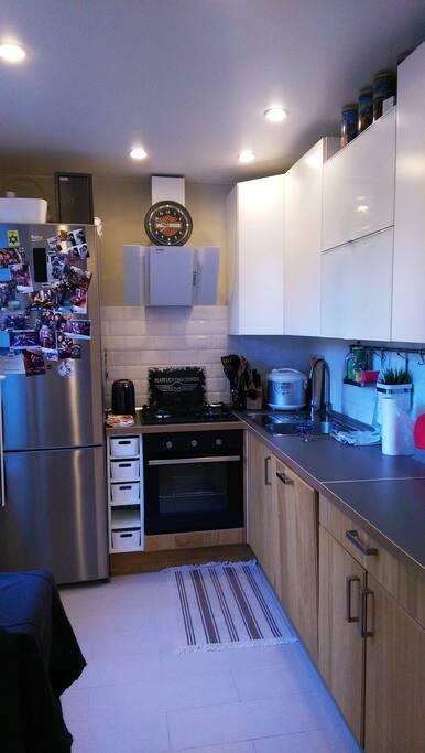 Кухня (объединена с гостиной): Холодильник с морозильной камерой, газовая плита, электрическая духовка, чайник, посудомойка, хорошая вытяжка, проточный фильтр питьевой воды.