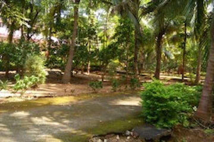 Zenville Ayur Homestay Palakkad Kerala