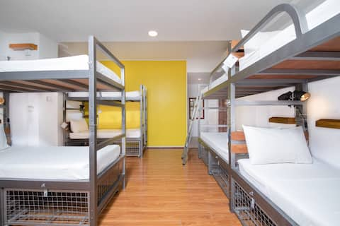 8 Bed Private Room