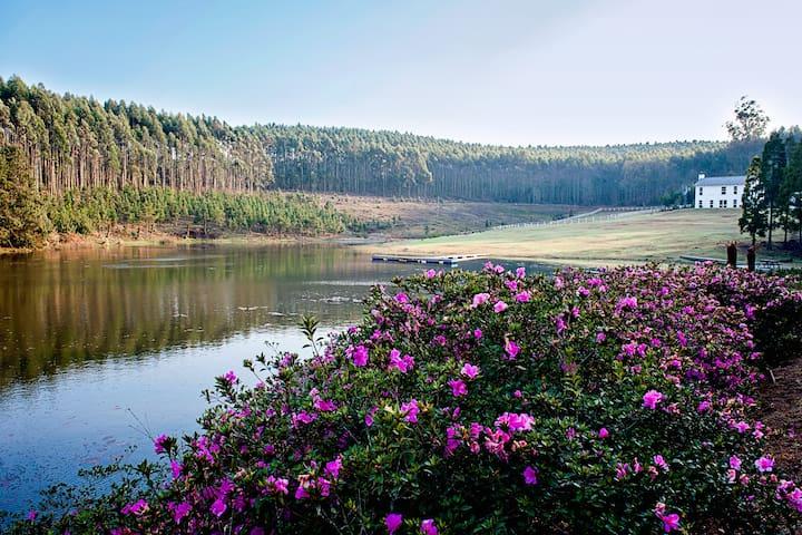 The dam on Glenogle Farm