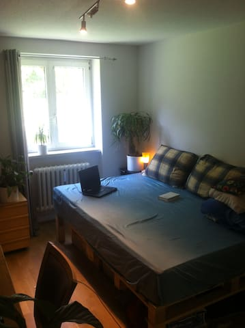 "Room in shared flat with ""pool"" - Freiburg im Breisgau - อพาร์ทเมนท์"