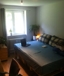 "Room in shared flat with ""pool"" - Freiburg im Breisgau"