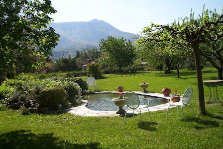 bed Provence & truffes -  DIGNE LES BAINS