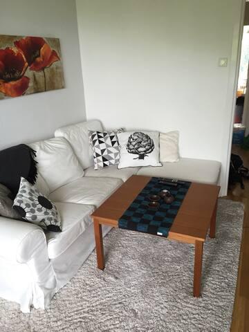 2 room apartment in C. Gothenburg - Göteborg - Wohnung