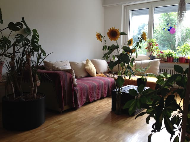 couch in green+cosy apt  Adliswil - Adliswil - 公寓