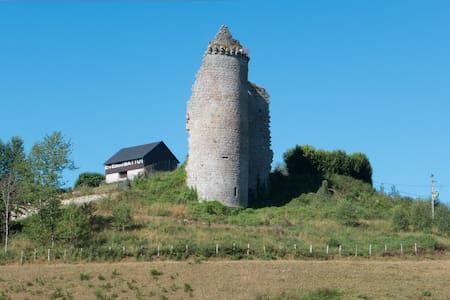 MAISON DE CAMPAGNE - GRAND TERRAIN - Liginiac - Talo