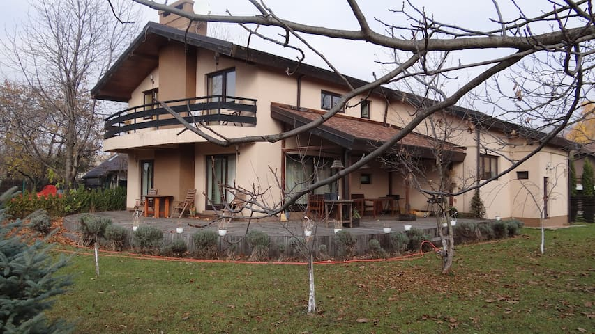 bamboo-villa - Breaza de Jos - Villa