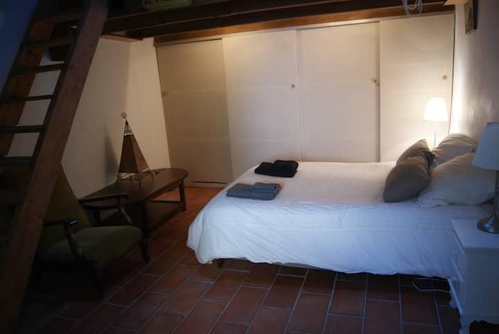 chambre spacieuse dans bel appartement