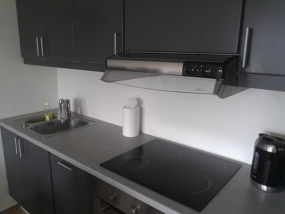 Fully equipped kitchen with dishwasher, freezer and fridge