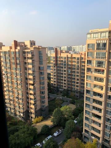 从餐厅远眺吴淞江