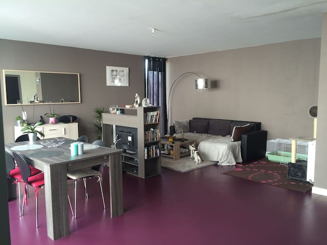 Grand appartement proche Disney - Fresnes sur Marne  - Apartment