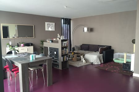 Grand appartement proche Disney - Fresnes sur Marne  - Διαμέρισμα