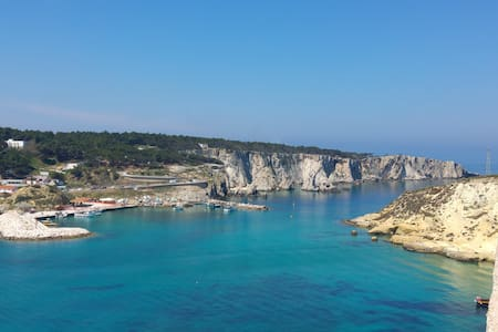 Puglia Tremiti Islands Octopus Studio | Sea & Art - Isole Tremiti