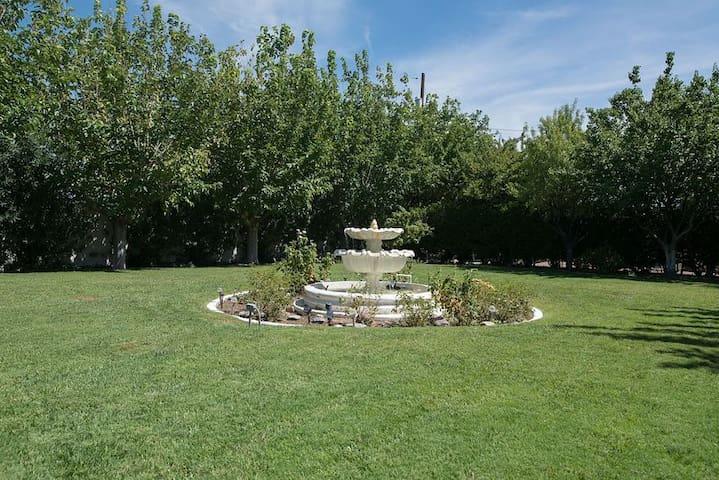 Huge yard surround beautiful shade trees