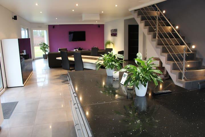 Grande maison de luxe situé au calme avec jardin - Ensisheim - House