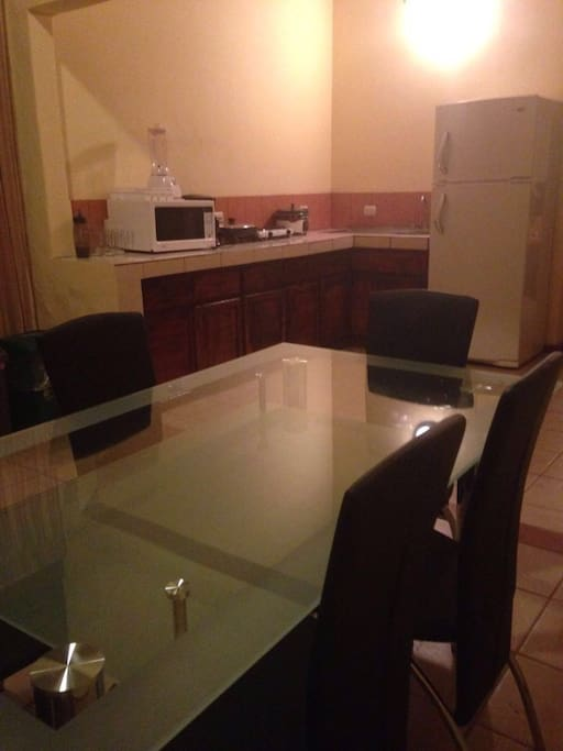 Fully equipped kitchen - microwave, refrigerator, blender, electric pan, dishes, glasses....