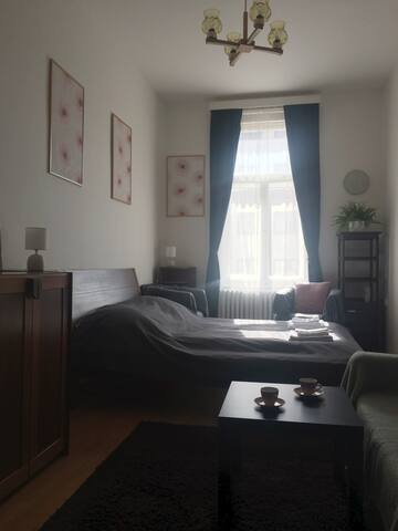 Nice and cozy room in Prague City Center