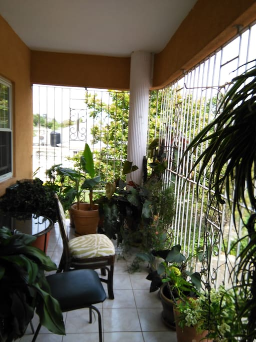 Room And Bathroom In 2 Br Apartment Flats For Rent In Mandeville Manchester Parish Jamaica