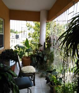 Room and bathroom in 2 br apartment - Mandeville - Apartment