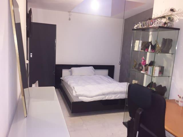 grande chambre avec salle d'eau independante - Coppet - Guesthouse
