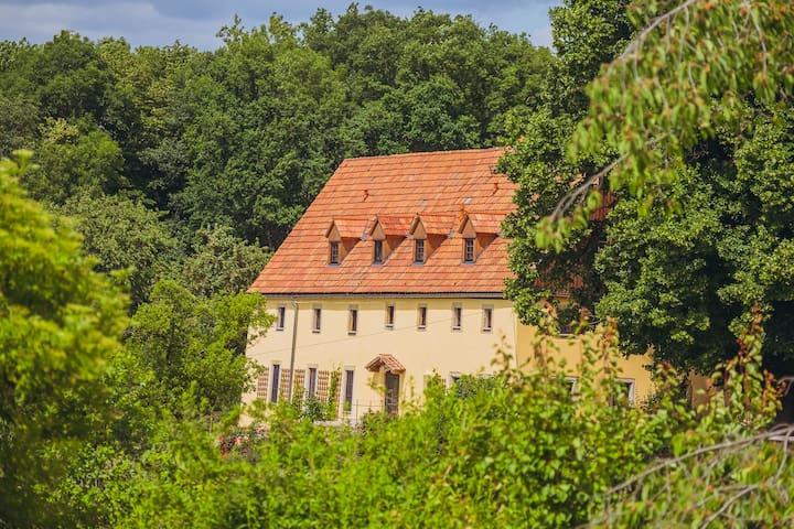 Romantikhof Seitenhain ~Landhaus~ - Liebstadt - Ev