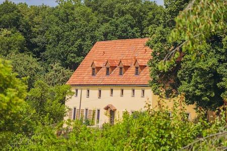 Romantikhof Seitenhain ~Landhaus~ - Liebstadt - House