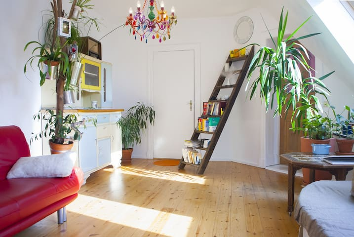 Room in a charming apartment,Berlin
