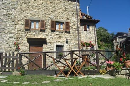 Villetta con giardino a Raggiolo - Raggiolo