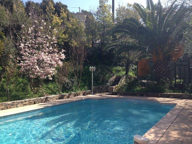 T3 avec terrasse et piscine - Oletta - Apartmen