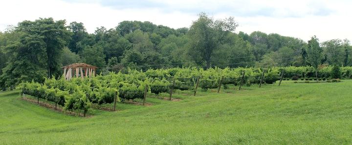 Winemaker Suite at Brianza