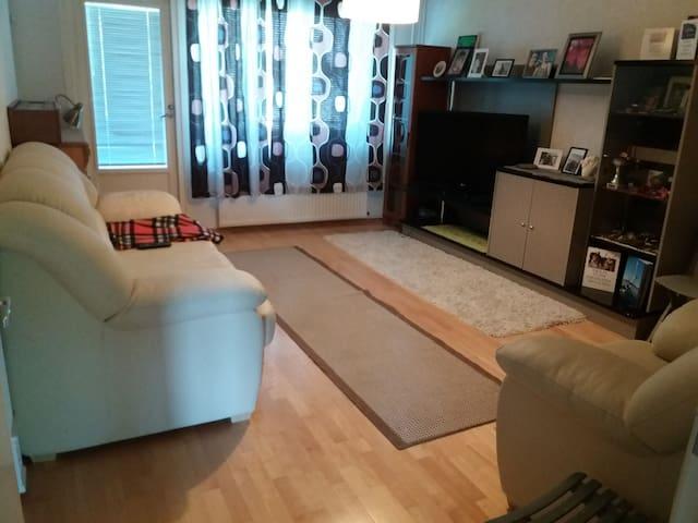 Olohuone. Living room.  Levitettävä vuodesohva