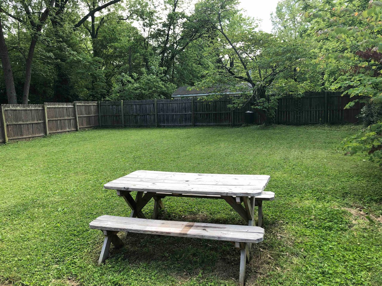 Backyard and picnic table