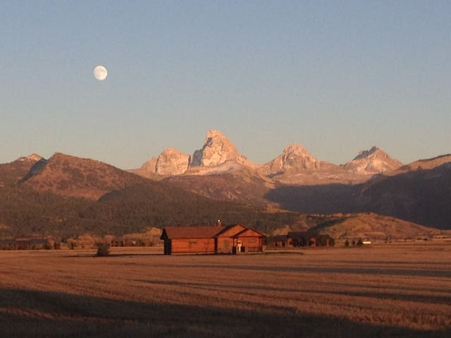 Teton Valley Ranch Murphy Room