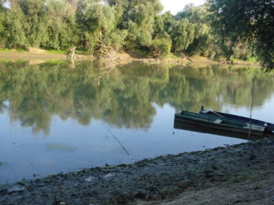Tamis river