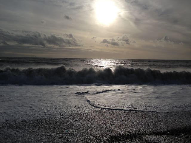 Enjoy Brighton and Hove in the Autumn/winter months too...its beautiful and refreshing!