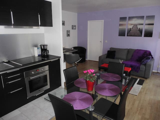 DISNEYLAND PARIS/ Val d'Europe BRIGET'Appart - Chessy - Apartamento