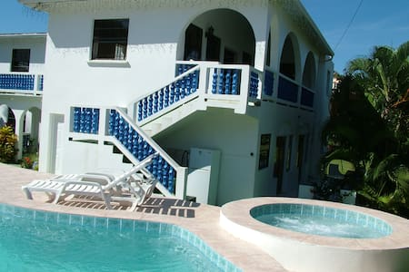 Spacious one bedroom apartment - Gros Islet