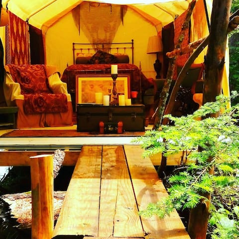 Glamping  luxurious tent in forest - Haines Township - Telt