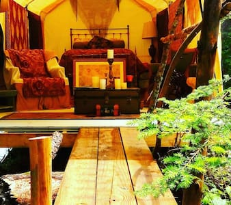 Glamping gypsy camp glorious tent - Haines Township