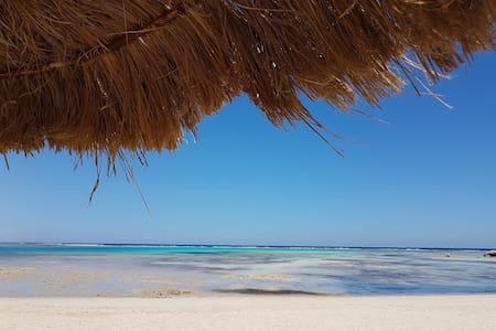 Resort con spiaggia e barriera corallina Mar Rosso