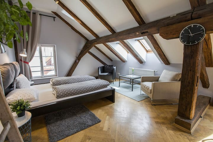 Cosy Apartment near Charles Bridge