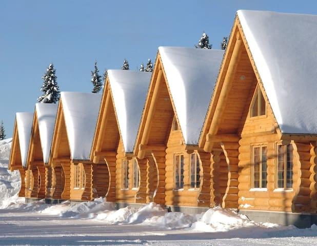 Log cabin in monts Valin