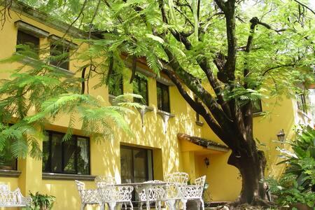 Spectacular Colonial Villas: Blue - Cuernavaca