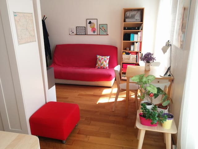 Very bright and cosy appartment for visiting Paris